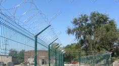 Колюче-ріжучі паркани і огорожі