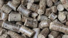 Сировина для виробництва пелет: основні вимоги