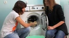 Побутове чи професійне пральне обладнання - яке обрати