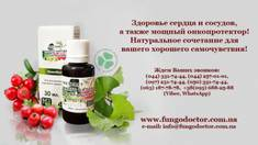 Ginkgo biloba and hawthorn extract – natural remedy for the cardiovascular system