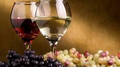 Виноградний прес — найкраще устаткування для виготовленнясмачного вина