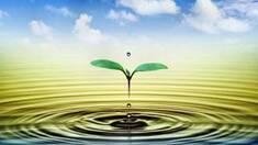 Баланс між живленням, опадами та зрошенням