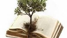 Сделай доброе дело - спаси дерево: закажи вывоз макулатуры из офиса или дома!
