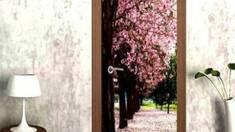 Міжкімнатні двері з 3Д покриттям: як зробити правильний вибір?