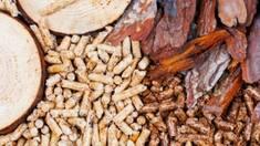 Мы изготавливаем экологические и безопасные для окружающей среды древесные пеллеты