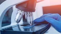 Что такое иммуноферментный анализ и почему он особенно актуален в 2020 году