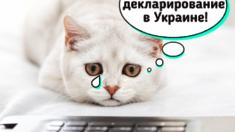 Нульове декларування в Україні!