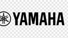 Почему стоит выбирать синтезаторы Yamaha