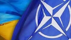 НАТО давит на Украину?