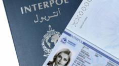 To Euro-2012 Ukraine will Have Access to Interpol Databases