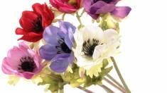 Спецпропозиція! Безкоштовна доставка штучних квітів!