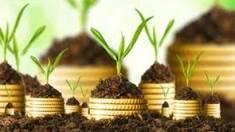 В украинский агросектор инвестировали более $ 400 млн