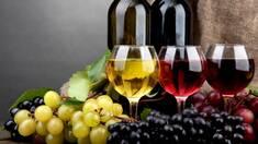 Италия - главный импортер вина вУкраину