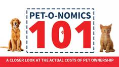 [Infographic] The True Annual Cost of Owning a Pet