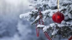 Погода на новогодние праздники: чего ждать украинцам