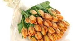 Спешите приобрести упаковку для цветов оптом!