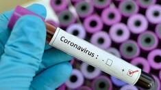 Коронавірус: відповіді на головні питання