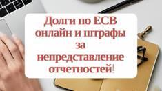 Борги з ЄСВ онлайн та штрафи за неподання звітностей!