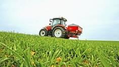 Названы основные элементы осеннего удобрения семена пшеницы озимой.