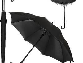 Парасолі та дощовики
