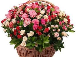 Букети та композиції з живих квітів