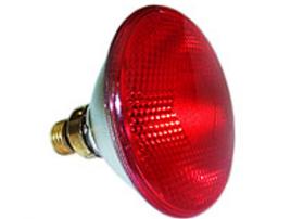 Інфрачервоні лампи