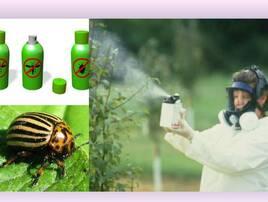 Хімічні засоби захисту рослин