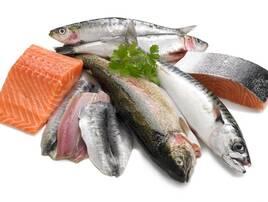 Риба та рибні продукти