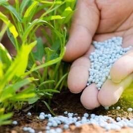 Удобрения и пестициды