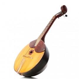 Інші струнні інструменти