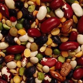 Зерно-бобовые растения