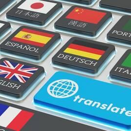 Словники, перекладачі, навчальні програми