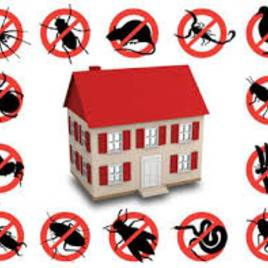 Средства защиты от вредителей, общее