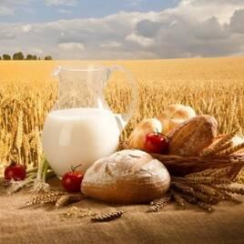 Сельское хозяйство, общее