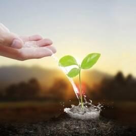 Засоби захисту рослин від хвороб