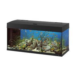 Товари для акваріумістики