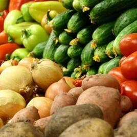 Насіння овочівництва