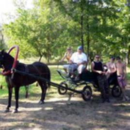 Green Tourism, Agrotourism, Ecotourism
