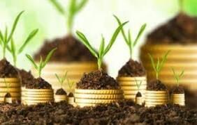 v-ukrainskiy-agrosektor-investirovali-bolee--400-mln
