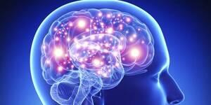 Чи є межа можливостей людського мозку?