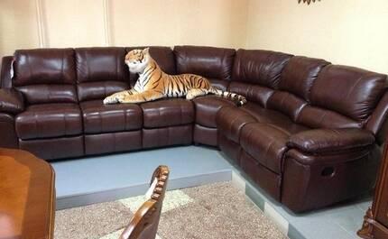 Почему стоит покупать кожаную мебель?