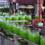 Консервний завод в Чехії. Виготовляємо візи під вакансію.