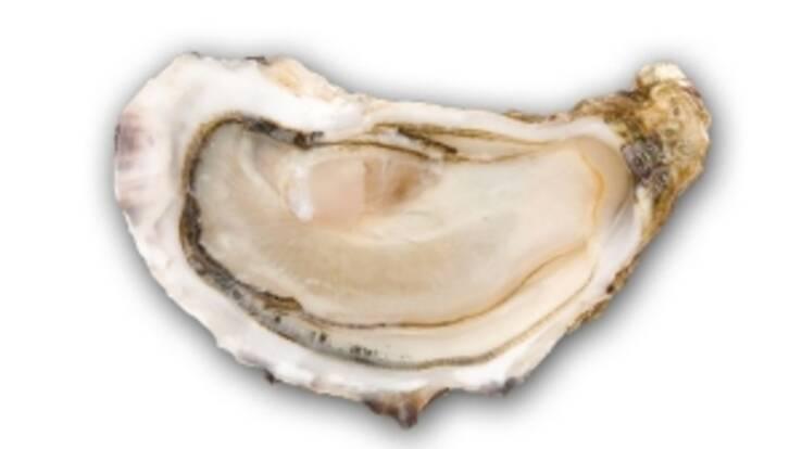 """""""Хорта Груп"""" доставляє морепродукти з Франції щотижня"""