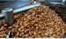 Роль обсмаження у вираженні смакових якостей кави. Основні ступені обсмажування