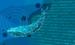 JavaScript, Java, Python – три кита мирового кодинга