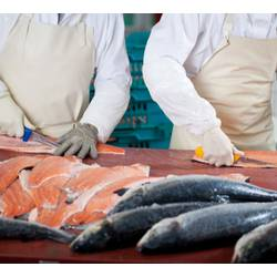 Рыбный бизнес: открываем собственный цех