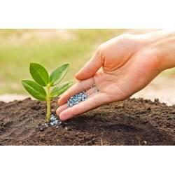 Удобрения Osmocote - гарантия хорошего урожая