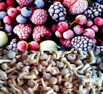 Только сейчас можно купить замороженные ягоды, фрукты и грибы оптом по чрезвычайно выгодным ценам!