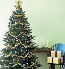 Прийшов час підготуватись до новорічних свят і купити штучну ялинку!