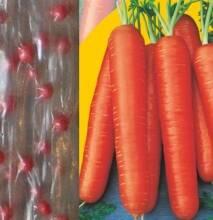 Предлагаем посевной материал высокого качества - дражированные семена
